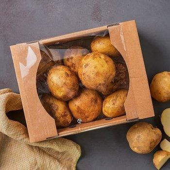 채소모음(감자/가지/오이맛고추)/ [6/13] 감자 상품 상세페이지 상품 클릭 후 10% 쿠폰 다운로드 필수