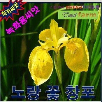 [SSG 희귀씨앗녹화용씨앗 노랑꽃창포 씨앗1kg]